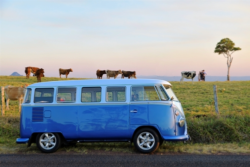 tours of sunshine coast kombi